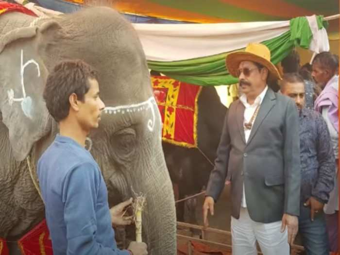 mla anant singh story: elephant, horse, mercedes and ak-47 fond anant singh will bring tejashwi raj in bihar
