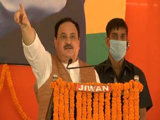 NDA election rally in Gaya, JP Nadda praises Nitish, said - NDA government will be formed again in Bihar