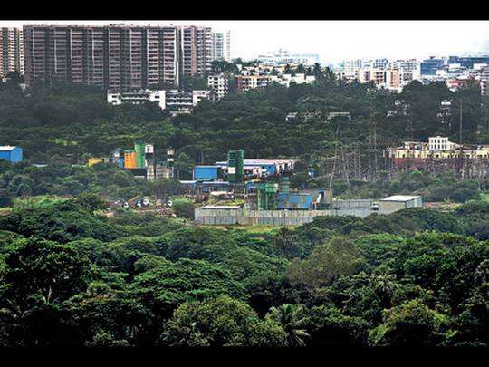 Aarey, spread over 3,162 acres, is not a notified forest