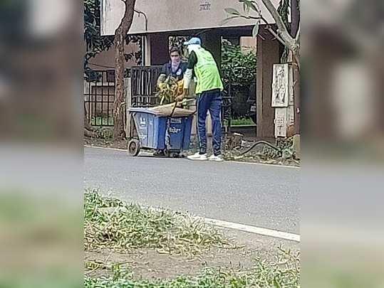 आपल्या कामाबद्दल धन्यवाद सफाई कामगार