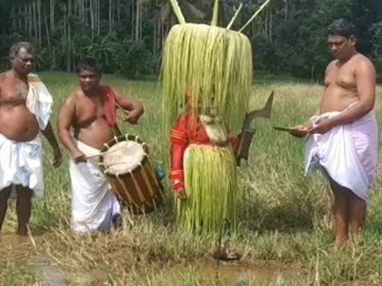North Malabar Farming