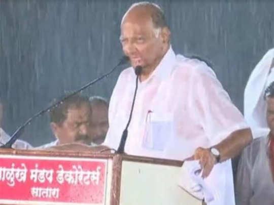 sharad pawar satara rain sabha