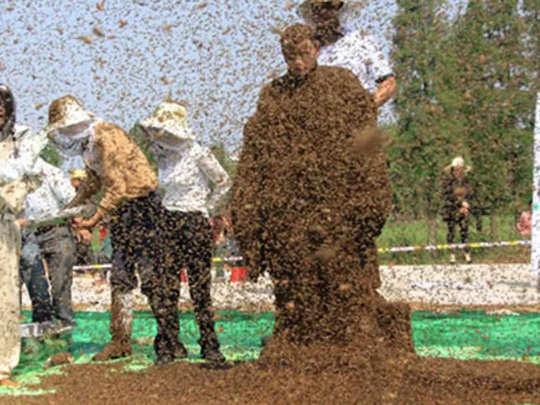 मधुमक्खियों से ढका आदमी