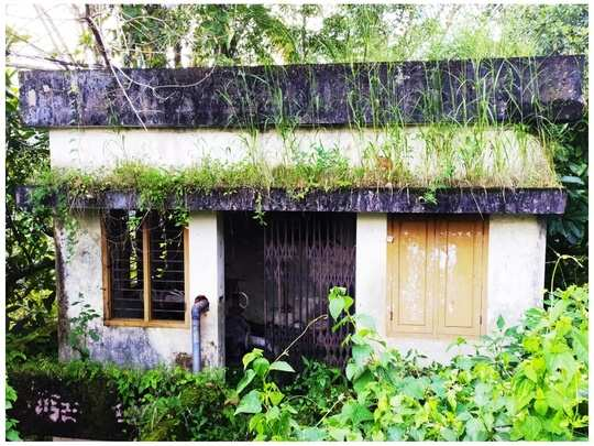 japan project