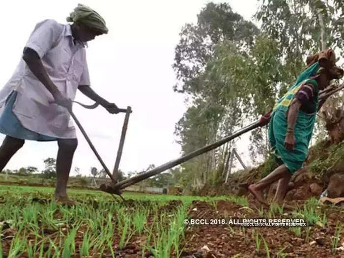 शेतकरी