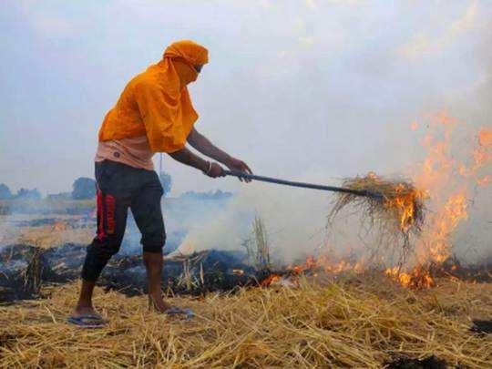 पराली से फिर घुटा दिल्ली का दम , पंजाब में टूटा पराली जलाने का रेकॉर्ड