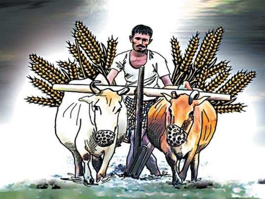 ...तर सुटू शकतील शेतकऱ्याच्या समस्या
