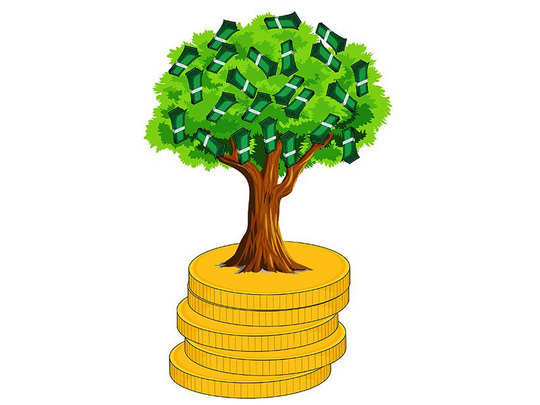 know about these five plants called tree of money and very useful according to vastu shastra