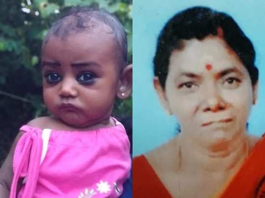 Palakkad Child and Grandmother Death