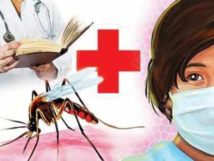 डेंग्यू, मलेरियाचा धोका!