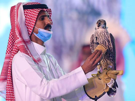 falcons pakistan