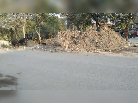 Cleanliness issue in village agwanpur, Faridabad