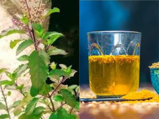 Tulsi And Ajwain Water