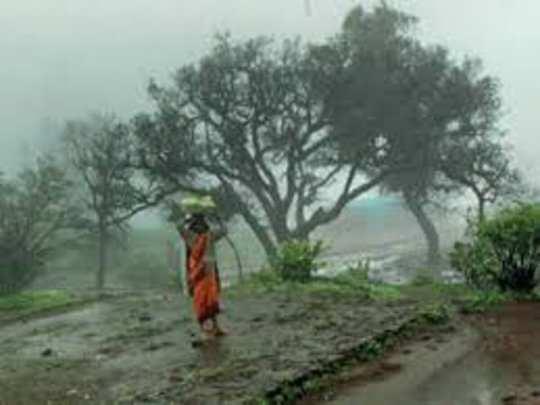 Rain in Maharashtra (file photo)