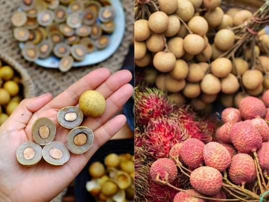 unbelievable health benefits of longan fruit which looks like lychee in hindi