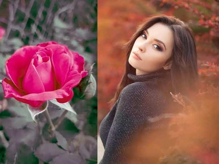 ayurvedic remedies for skin benefits of rose petals for the skin in marathi