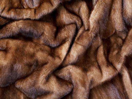 Fashion Sale से आज खरीदें गर्म, सॉफ्ट और कंफर्टेबल Blankets, आज खत्म हो रही है सेल