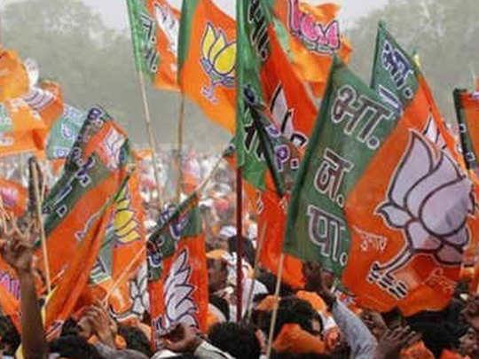 BJP-wins-in-Kashmir-Valley