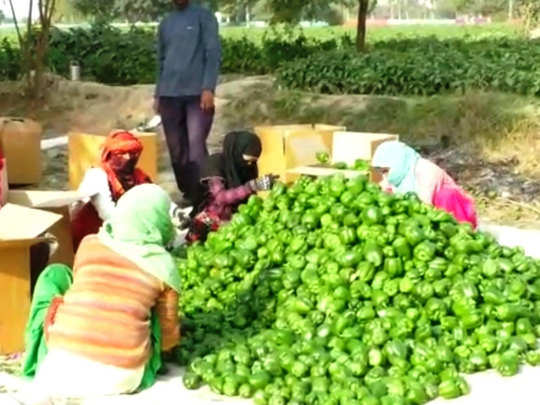 किसान आंदोलन का असर