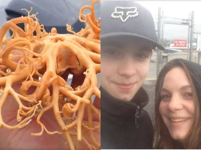 weird creatures in the ocean like alien