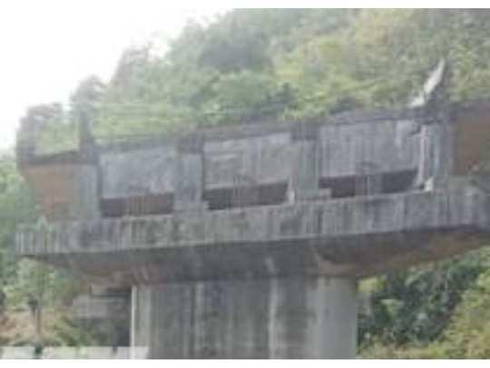 koottupuzha bridge