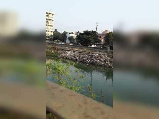 कचऱ्याचे साम्राज्य