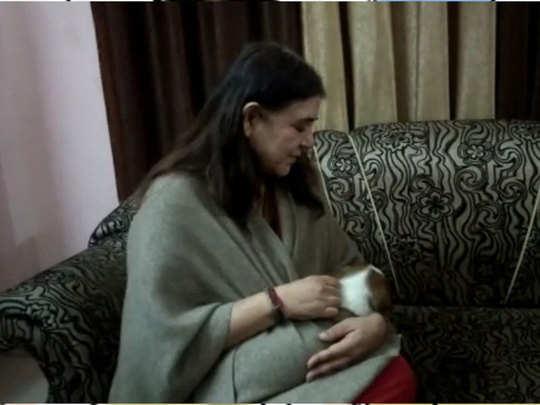 कुत्ते के बच्चे के साथ मेनका गांधी