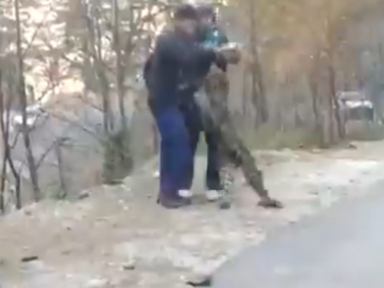 Leopard Playing With People