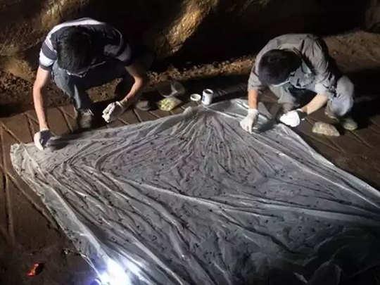 china-corona-bat