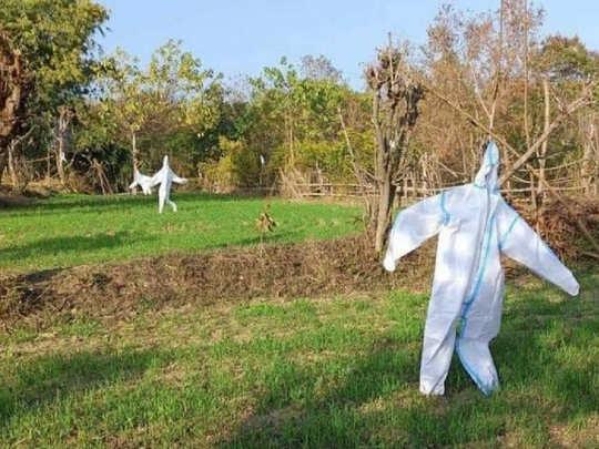 PPE kit Scarecrow