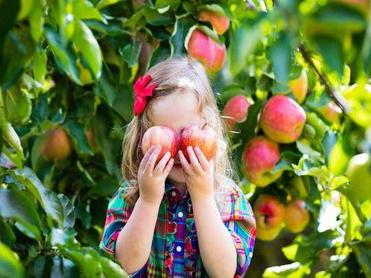 benefits of eating apple to child in marathi