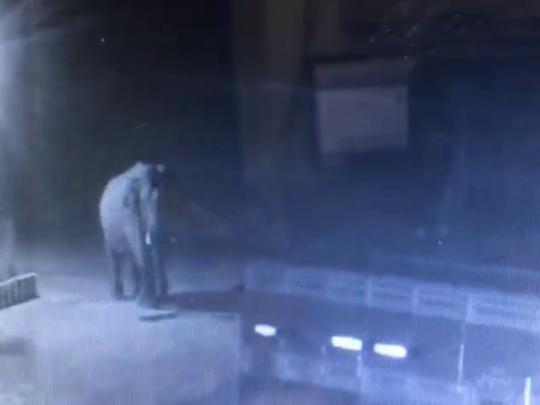 moolankavu elephant
