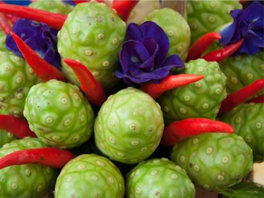 what are the health benefits of noni leaves juice