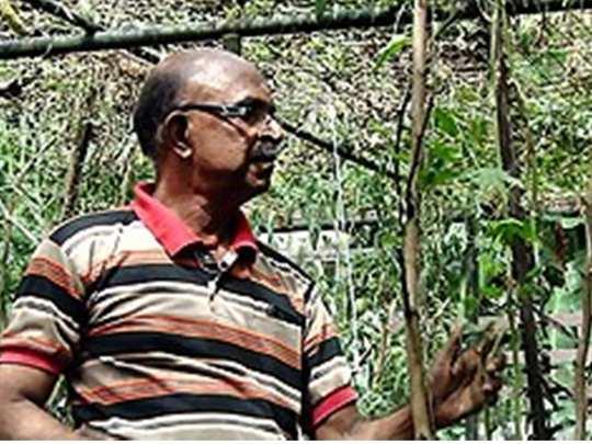 Gopalakrishnan Kothamangalam Farmer