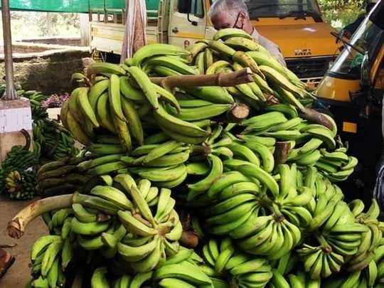 Kerala Crops Base Price
