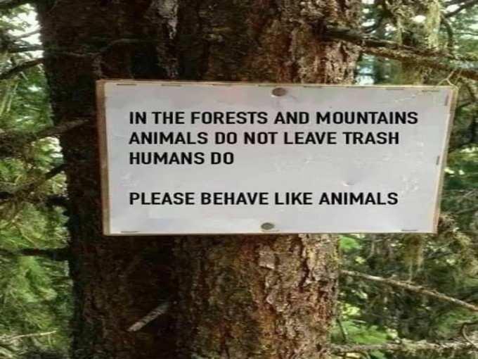 जानवर बने!
