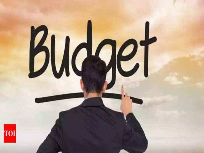 budget 2021: there should be measures that indias market is not dependent on foreign toys