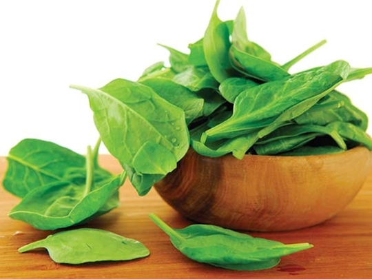 spinach to send emails & it could warn us about climate change says mit scientists