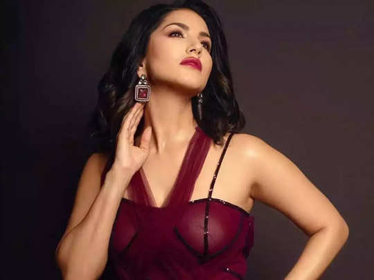 sunny Leone alleged fraud case of Rs 29 lakhs