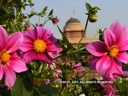 mughal-garden1