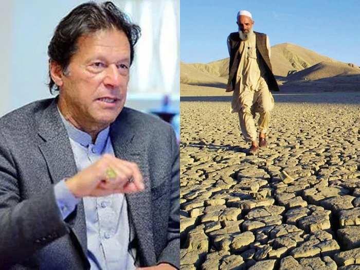 Pakistan Imran Draught