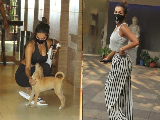 मलाइका अरोड़ा के एक ही दिन में दिखे दो ऐसे लुक्स, जिनमें हसीना ने जमकर दिखाए अपने कर्व्स