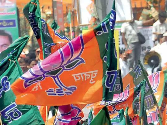 BJP agencies