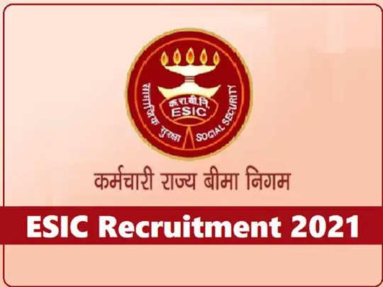ESIC मध्ये बंपर भरती; बारावी उत्तीर्णांपासून पदवीधरांपर्यंत नोकरीची संधी