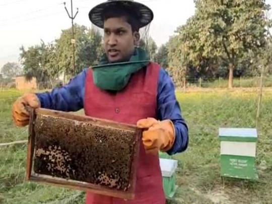 Varanasi news : शहद की खेती करके आत्मनिर्भर बन रहे युवा, खुद PM मोदी कर चुकें है तारीफ
