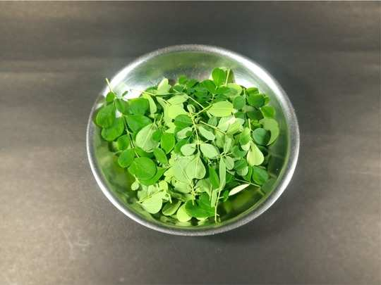 can moringa sahjan leaves help manage diabetes know its effect on blood sugar levels
