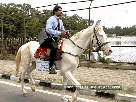 Riding horse to office