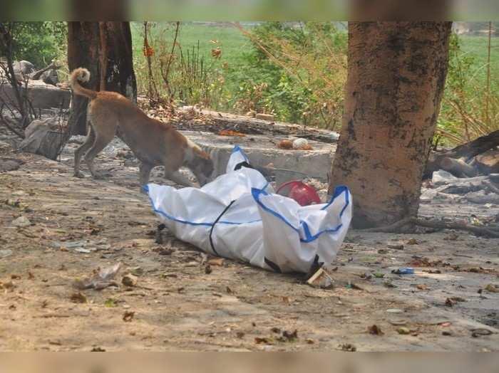 गाजियाबाद: नगर निगम की बड़ी लापरवाही आई सामने, हिंडन श्मशान घाट पर शव को कुत्ते ने नोंचते रहे