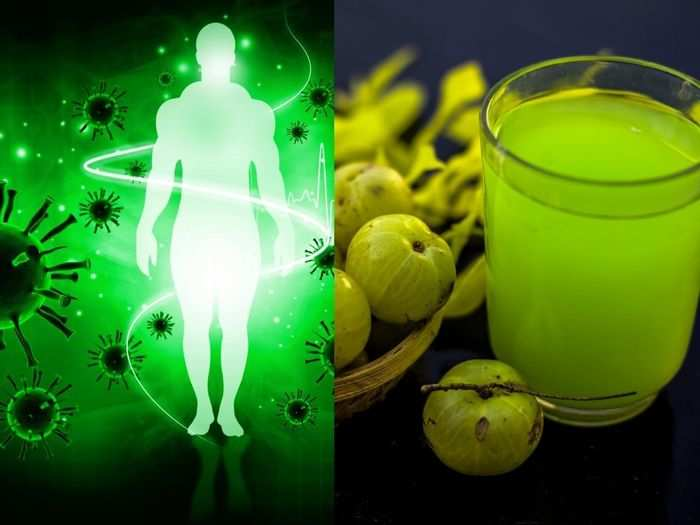 boost your immunity by amla moringa shot amid the covid19 pandemic or vaccination and here know its benefits