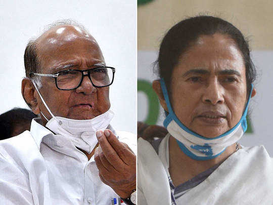 West Bengal Poll: पश्चिम बंगालच्या विजयासाठी शरद पवारांकडून ममता दीदीचं अभिनंदन!